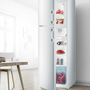Refrigerator with Top Freezer